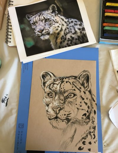drawing painting animals 12